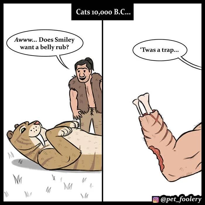 「古代的貓VS現代的貓」爆笑差異漫畫!古代版「貓咪坐臉上」網笑翻:祖先們命都很硬呢