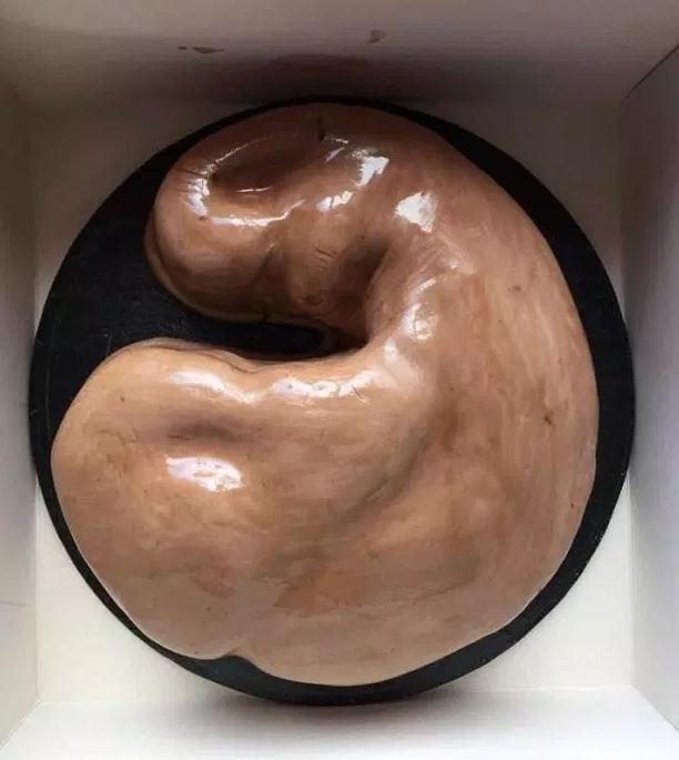 花2千元訂「二頭肌蛋糕」送男友 成品卻變「外星胎盤」讓網笑翻!