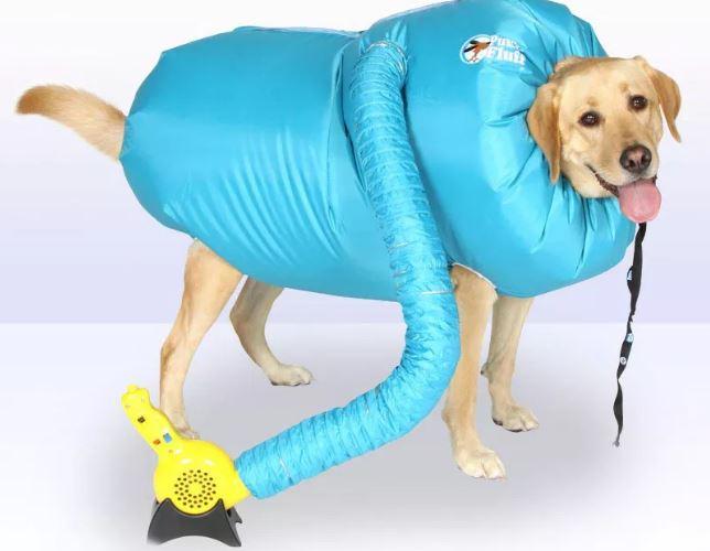 國外推出「可以讓主人解脫」的超狂狗用吹風機 只要「幾分鐘」內毛全乾!