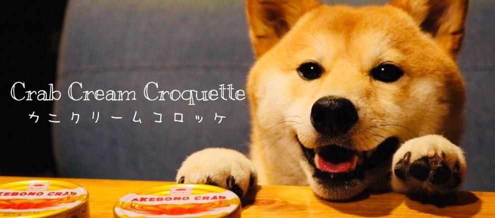 毛主人精心製作「狗狗美食」超萌阿柴桌邊等開飯 溫馨影片被盜用「他竟然變壞人」