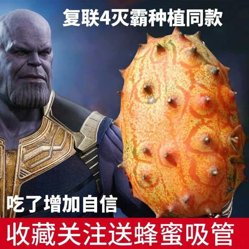 粉絲瘋搶《復仇者聯盟4》出現的謎樣水果 網友爆笑提問:是薩諾斯親手種的嗎?