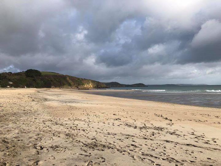 70歲老奶奶花一年「為52個海灘改頭換面」!修復「前後對比」讓網爆淚:地球還有救