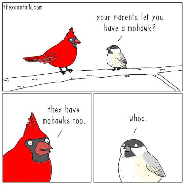 12張如果小鳥會說話的「超爆笑內心戲」 禿鷹太心機了!