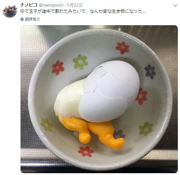 煮水煮蛋不小心弄破卻「多出2隻黃腳丫」 超生動「凝固外表」網驚:是真的蛋黃哥!
