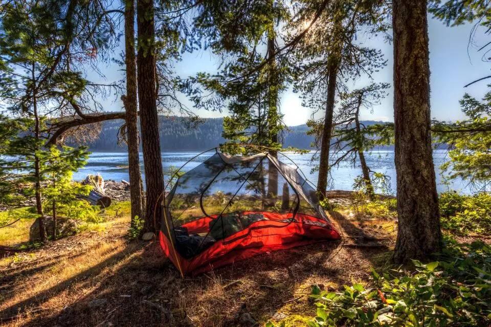國外推「透明帳篷」反應超兩極 晚上躺著「浪漫看星星」網卻嘲:像巨大的蚊帳!