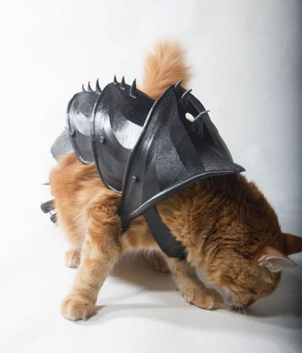設計師打造貓皇的「征服世界盔甲」!貼心「識別碼」24小時都安全
