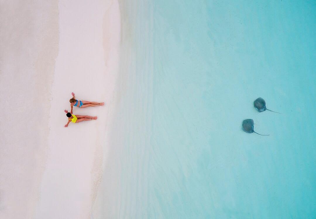 25張讓你想「直接買一台空拍機」的絕美鳥瞰世界照 原來「上帝看花海」是這樣的天堂視角