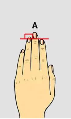 國外瘋傳看「食指與無名指長短」揭露隱藏性格 千萬不要惹「兩根手指一樣長」的朋友!