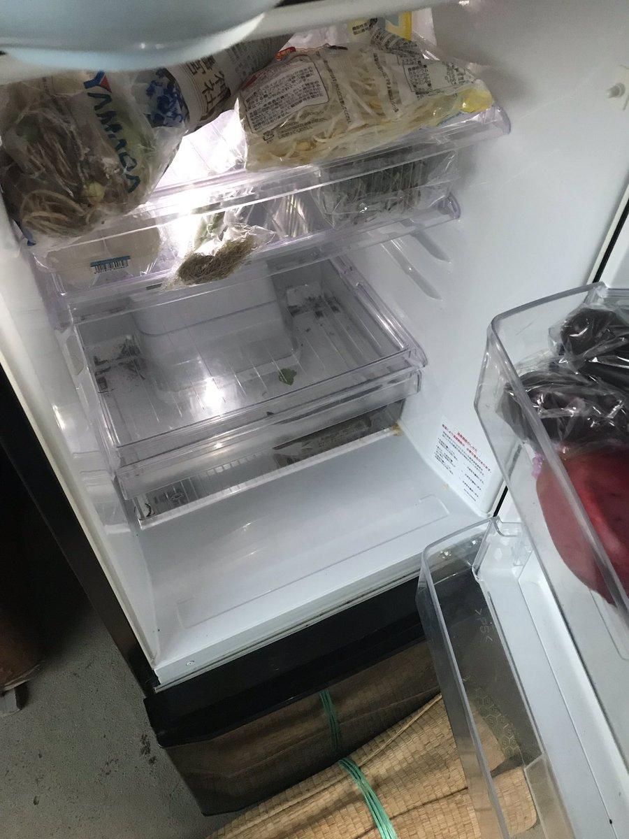 他打開冰箱驚現「爸爸養的活生物」 細問才發現牠「住了一星期」嚇壞:怎麽忍心?