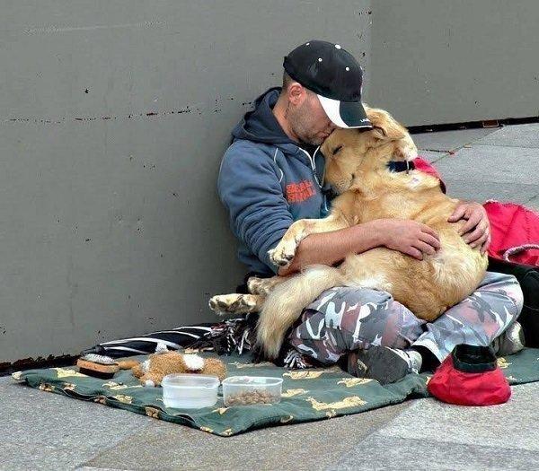 12個可以證明「狗狗才是你上輩子情人」的證據 不管體型多大牠只想「坐在你身上」!