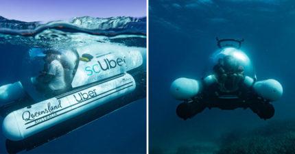 大堡礁推全球首創「可以潛水的Uber」 下單完「專屬直升機」飛來直送搭船!