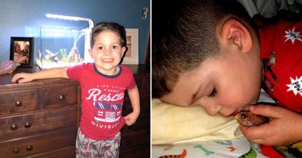 媽媽驚見4歲兒「抱著一條金魚睡覺」 他的「天真理由」讓網心疼:不能怪他!