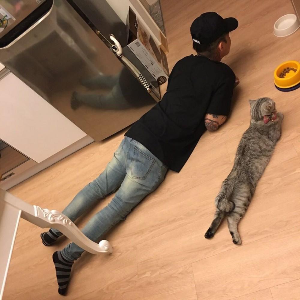 台灣美貓上演「紫禁之巔」跟老爸PK街舞 網看完笑翻:這個角度不科學!
