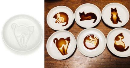 日本推出貓奴必搶的「夢幻醬料碟」 倒完醬油「傲嬌貓皇現身」超可愛!