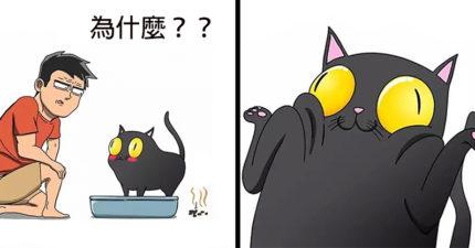 30張「有養貓的人才懂」的辛酸悲劇 牠一直「盯著角落」奴才就該開始小心!