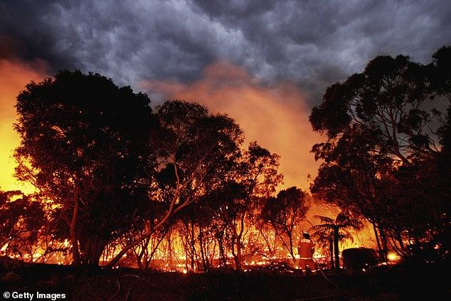 科學家爆「人類文明」將在2050年消失 地球暖化引發「嚴重災難」網:世界末日來了?