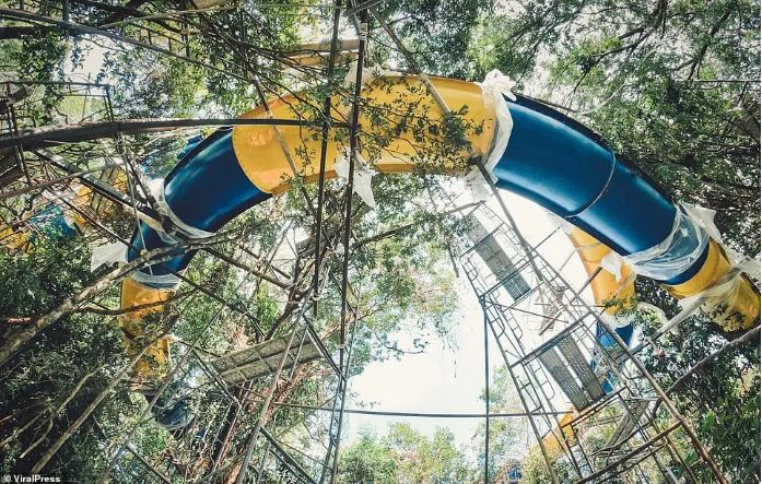 世界最長滑水道「總長1公里」破紀錄 遊客溜4分鐘才能「穿過整片森林」!