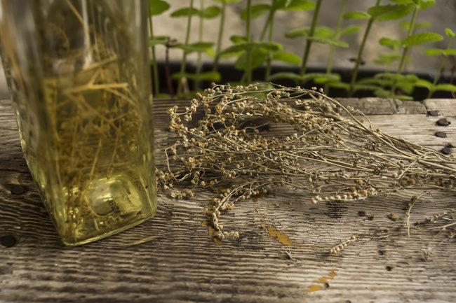 11種「讓蚊子乖乖遠離你」的神奇妙招 原來「洗髮精+醋」就是萬能驅蚊神器!