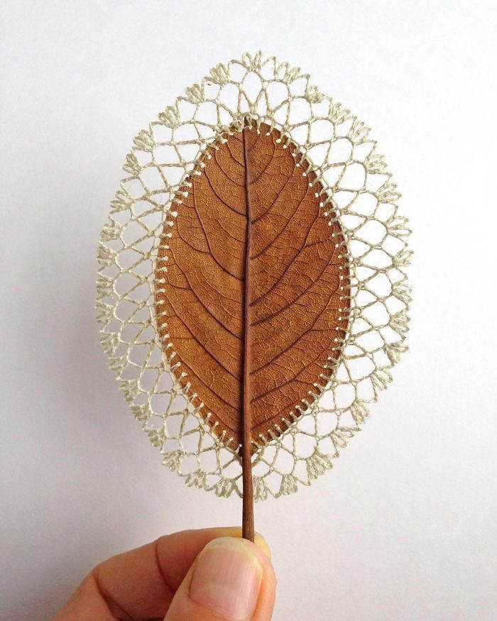 她用「隨處可見的枯葉」製作超唯美藝術品!「樹葉盒子」根本就是療癒魔法❤