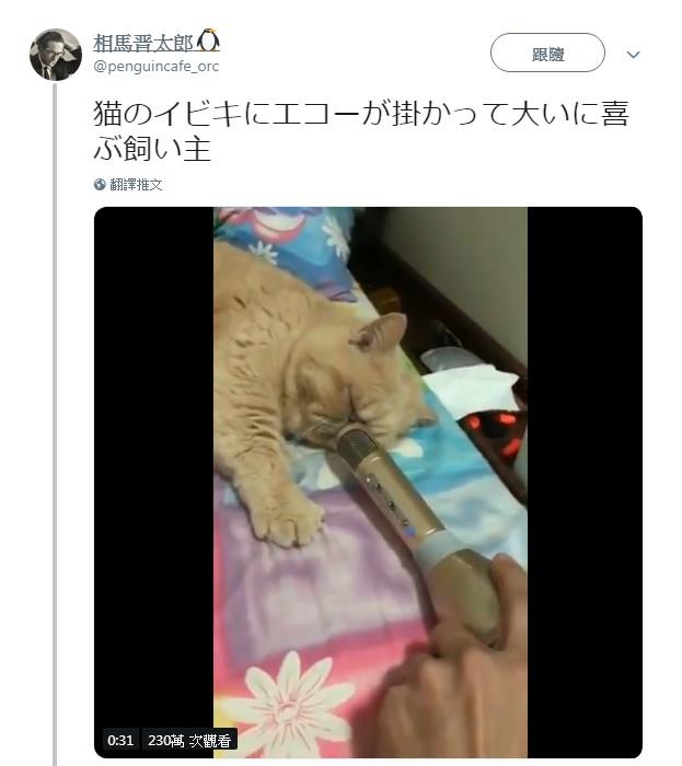 影/貓皇「睡太沉」一直打呼 主人偷拿麥克風廣播…超另類「大悲咒」爆紅!