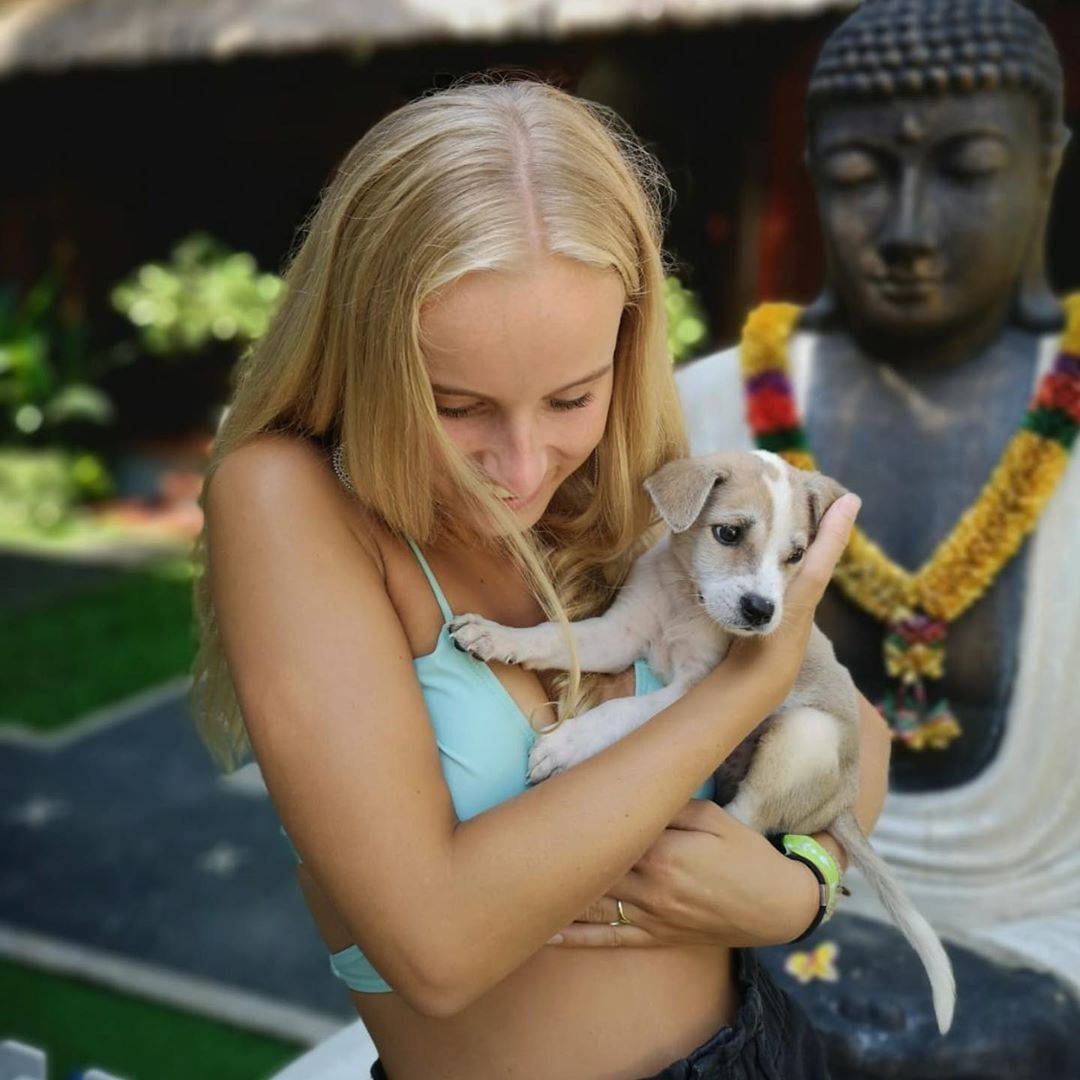 峇里島必住「佛心價飯店」送狗狗紓壓療程 只要「青旅價」活動卻比五星酒店還多!