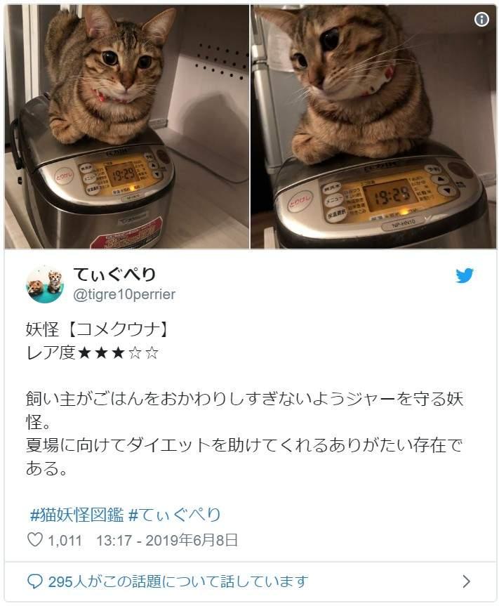 網友分享「妖怪圖鑑」揭發貓咪的詭異怪癖 牠睡著「變回大叔」嚇壞貓奴!