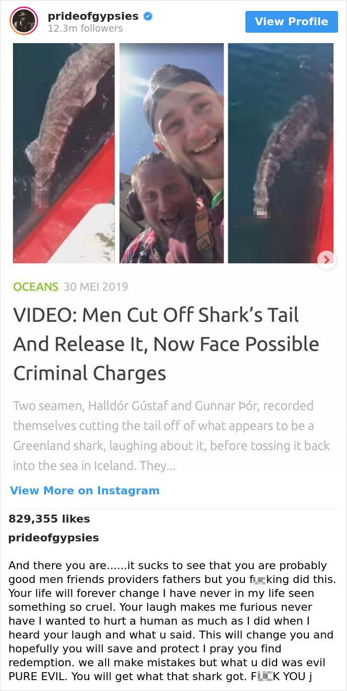 白目漁民故意拍片「斷尾鯊魚」又丟回海裡 水行俠「爆粗口」氣炸:你們會跟牠一樣!
