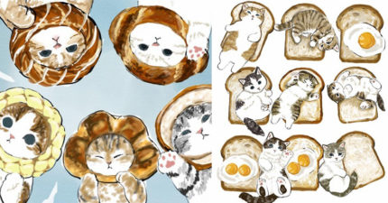天菜級「貓咪食物插畫」可愛到每張都能當桌布!喵大學畢業照「頭戴甜甜圈」萌度破表