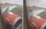 影/狂男為了搭飛機…徒手「爬上機翼」乘客嚇歪 他:行李也放好了!