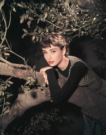 當年奧黛麗赫本紅到多誇張?他問「現代誰能跟她比」...網推「暗黑版赫本」是她!