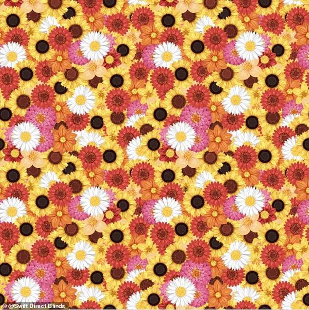 你能在8秒內「找到花叢裡的蜜蜂」嗎?挑戰背後藏「重要意義」這就是找不到的原因!