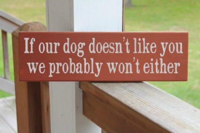 16個讓你驚呼「這才叫做用腦」爆笑警語 如果連你的狗都討厭你...你覺得我會喜歡你嗎?
