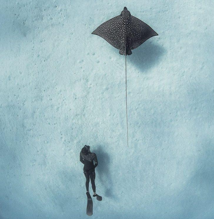 25張《國家地理》才拍得到的「時間暫停照」 蒙古的「深藍色珍珠」根本是童話仙境!