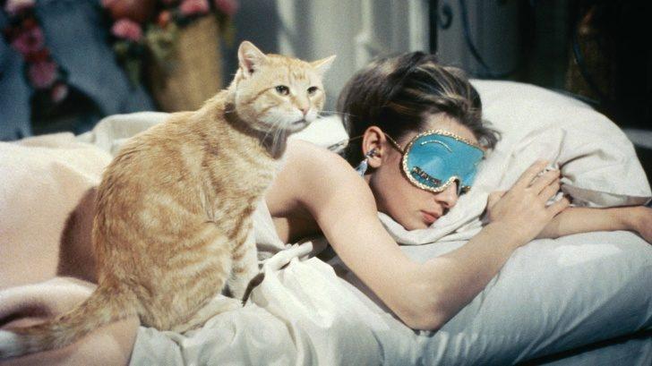 研究證實「愛賴床的人」智商比較高 懂得告訴鬧鐘「我不想起床」是聰明的象徵!