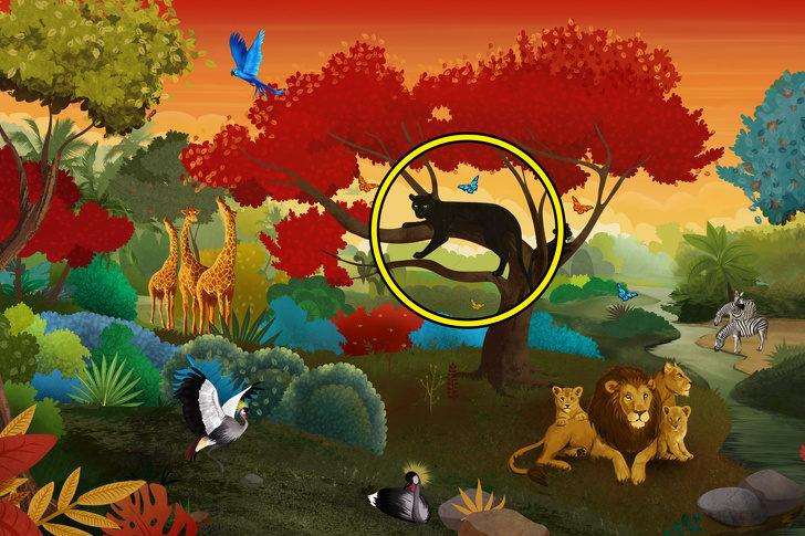 你第一眼看到的動物是什麼?神準「潛意識分析」揪出内心深處的黑暗面!