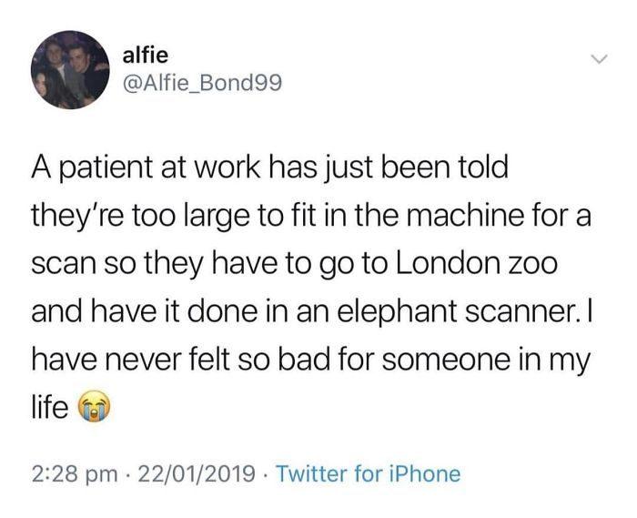 41個讓你覺得「今天好過一點了」的超悲慘人類照 他胖到只有「大象的X光機」塞的進去