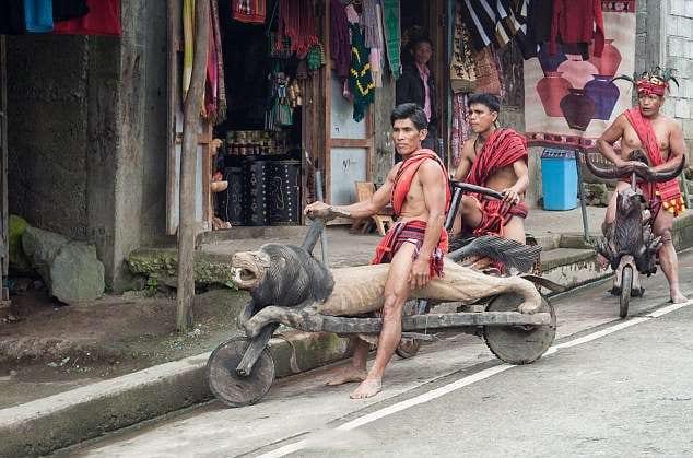 超狂原住民打造「木雕腳踏車」騎上街 還辦「部落公路比賽」近看:全是動物!