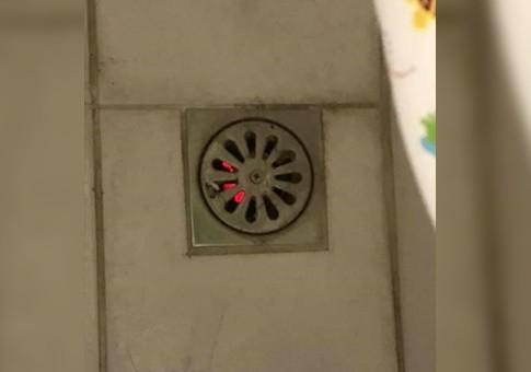 她在浴室驚見「排水孔發出紅光」嚇壞 釣出水電達人「神解答」被讚爆:長知識了!