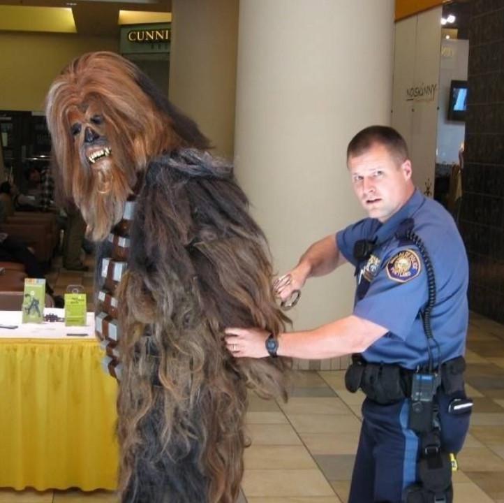 16個證明「警察其實是可愛小屁孩」的搞笑瞬間 他們為了「一隻鳥」拉起封鎖線!
