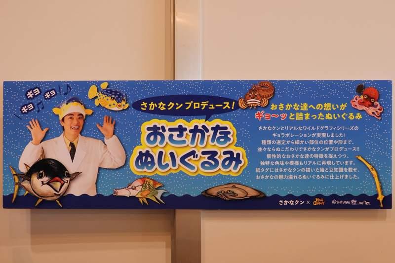 水族館推「超仿真」魚玩偶 網近看「大章魚吸盤」超震驚…絕對無法抱著睡覺!