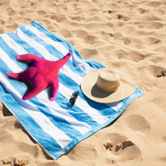水族館驚見跟「派大星」相似度100%海星!超荒謬「P圖大戰」太好笑:這翹臀~