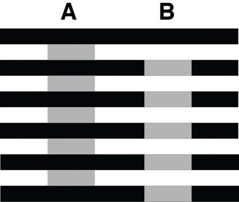 網瘋傳「黑白照+橘點」可以騙過80%人的眼睛 如果看到「是彩色」就錯了!