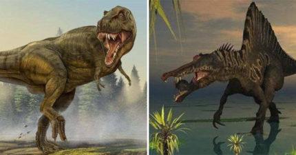 原來暴龍不是最大肉食恐龍?這3種「超兇猛恐龍」比暴龍更敏捷 「棘龍」甚至爭霸海陸!