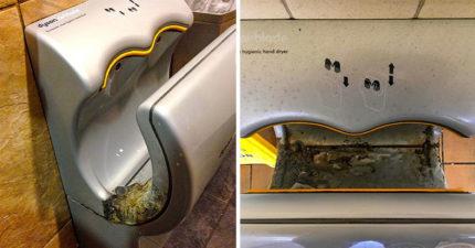 科學家證實公廁「烘手機」其實超危險!打開「30秒」周圍空氣直接變溫床