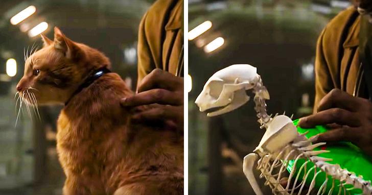 17個讓你「幻想完全破滅」的電影幕後落差照 超萌的Goose「原始模樣」只有骨頭!