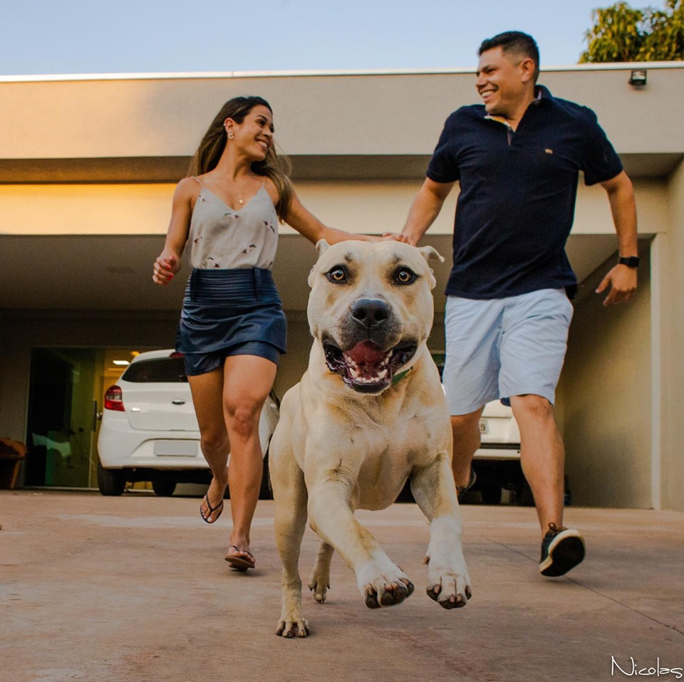 情侶請攝影師拍「婚前紀念照」  沒想到「超ㄎㄧㄤ狗」亂入畫風大變…10萬網友笑翻!