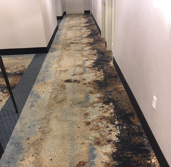 21個「住進去會讓你哭一輩子」的天兵居家設計 在浴室裡「鋪地毯」一秒就讓人抓狂!