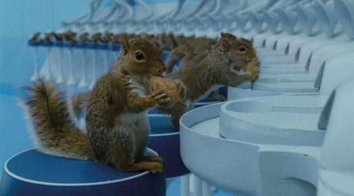 15個「藏在經典電影裡」的超驚喜細節 《捍衛任務》基努李維的「手錶」竟是勝利關鍵!