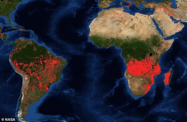 亞馬遜大火尚未撲滅…「地球第二個肺」剛果盆地也遭殃 巴西「拒絕6億捐款」反嗆:管好自己!