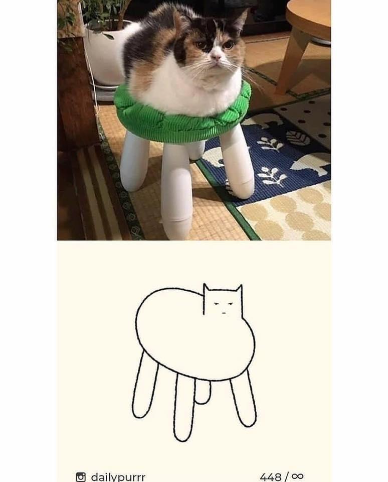 手殘也沒問題!10張作品證明「隨便畫幾筆」就可以還原厭世貓咪 網驚:那是貓蜘蛛?